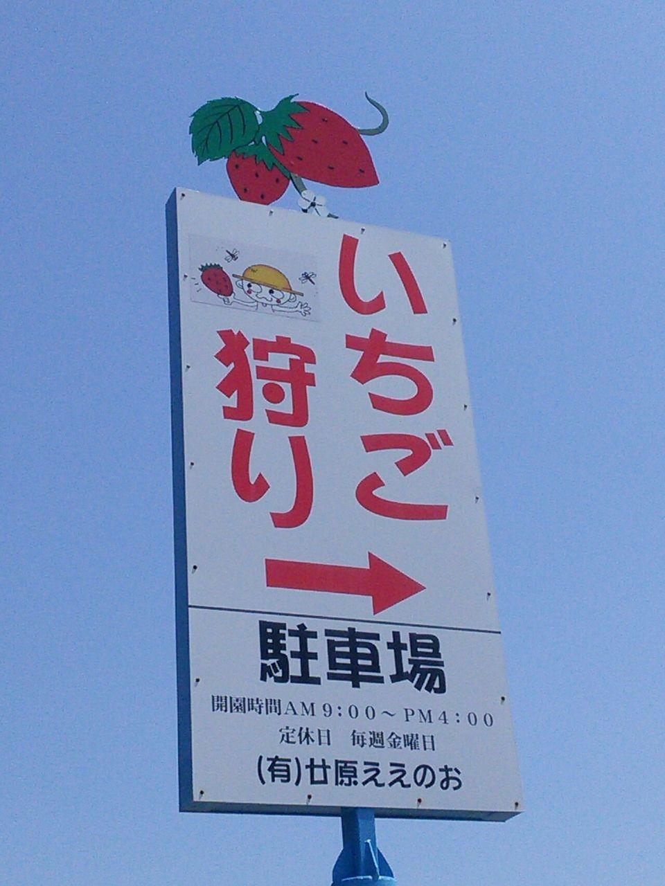 廿原 イチゴ 狩り