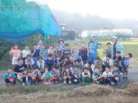 1002芋掘り (2)