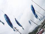 katsuo20110507