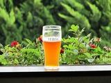 アメリカンペールエールビール