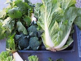 白菜小かぶブロッコリ