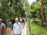 2県の木の小路