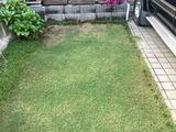 芝生の補修2017-10-07 16 10 24