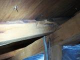 (1)以前漏れていた箇所は乾いています