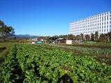 農園全景(2)