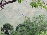 (4)リバーサイドゴルフ練習場