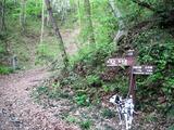 (3)かたらいの路