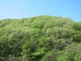 (1)草花丘陵