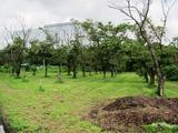 富士通 2011_08_06