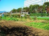 富士通 2011_10_31