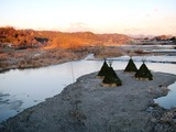 (7)多摩川