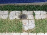 (1) 駐輪場所のオイルニジミ
