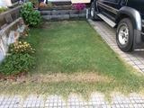 芝生の補修2017-10-07 16 10 32