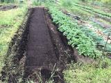 (6)畝の準備