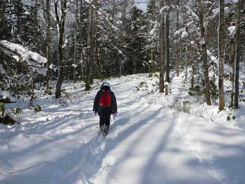 雪の中の踏査