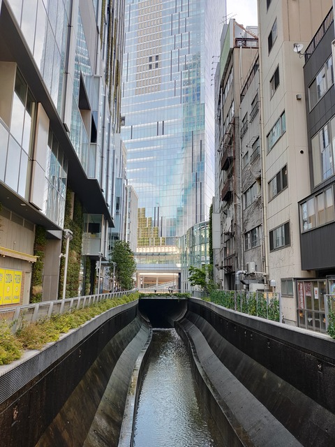 Shibuya Tokyo 2020 May 1
