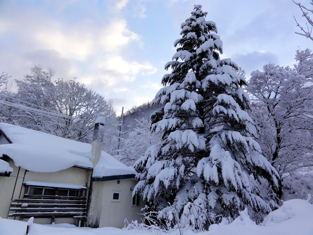 昨日の吹雪で定山渓はこんなにきれいに!