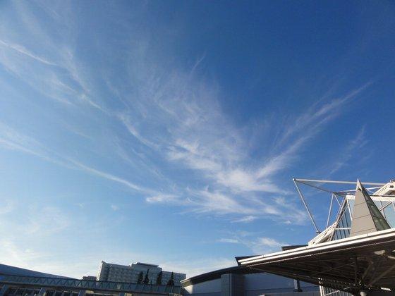 東京有明の空