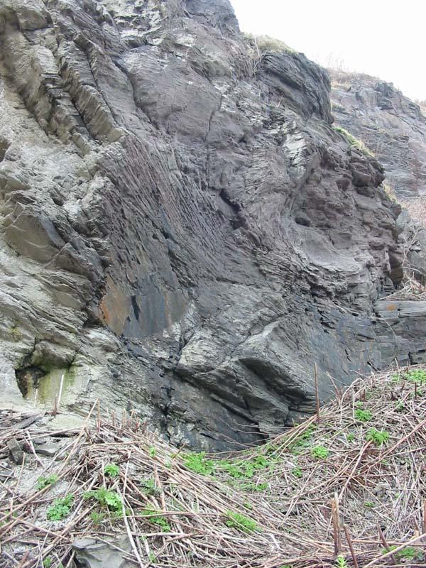 磯谷トンネル入口のSubaueous lava
