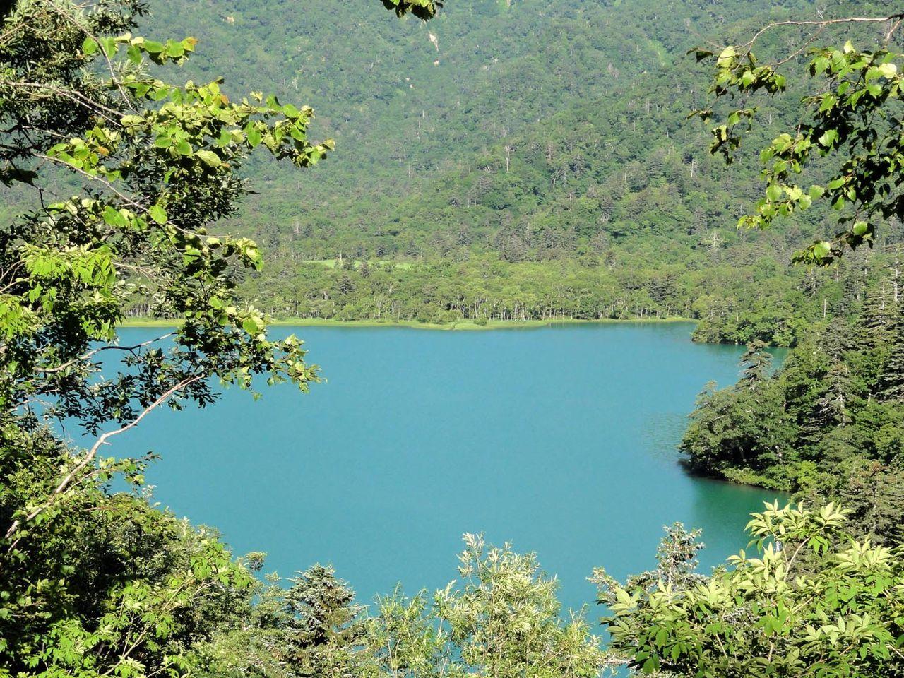 夏の支笏湖