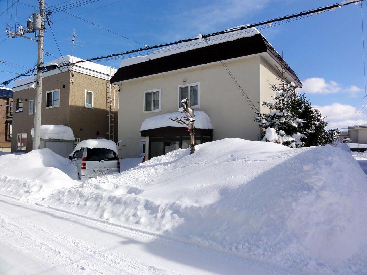 今年は2月に入って雪が多かった