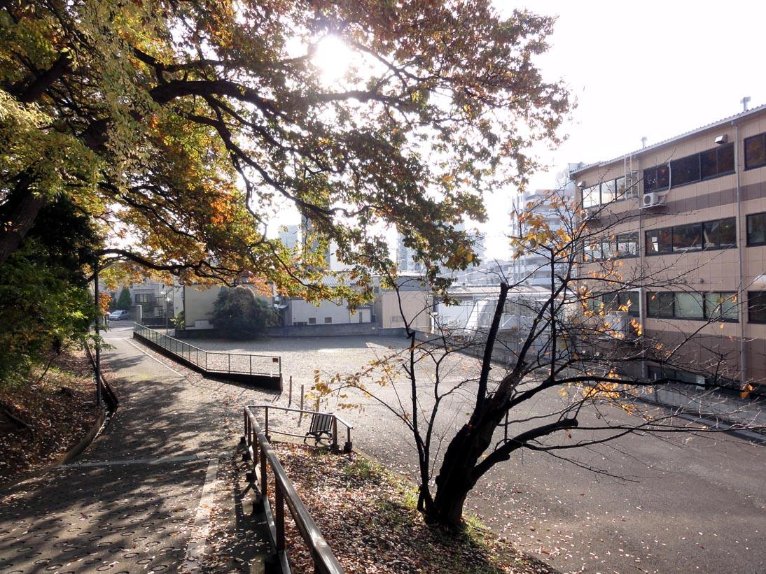 山じゃないですが北松戸の紅葉