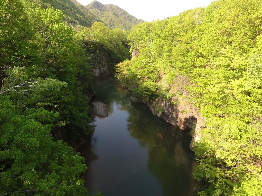 定山渓の山は新緑のきれいな季節になりました。