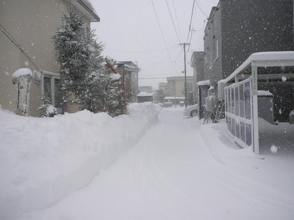 2月下旬だというのにこの冬一番の嵐