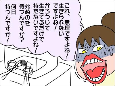 2005akachan55