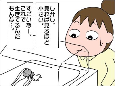 2005akachan76