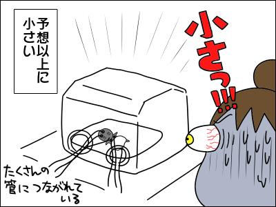 2005akachan54