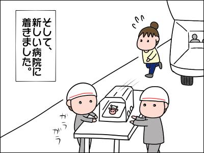 2006akachan154