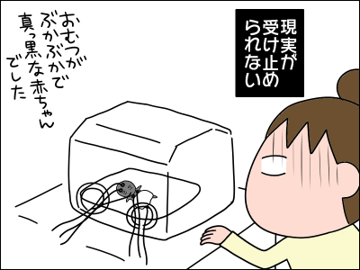 2005akachan56
