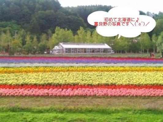 北海道さゆり塾