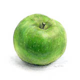 bramley-apple-2008
