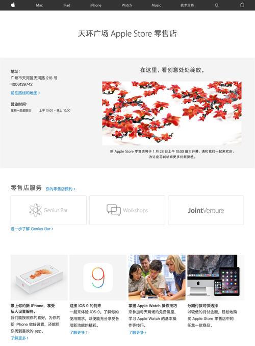 ŷ环��场 - Apple Store ��ӴŹ(20160111)
