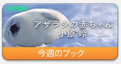 iBooks00