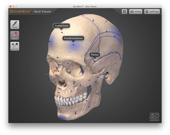 BoneBox-Skull-Viewer-Hero