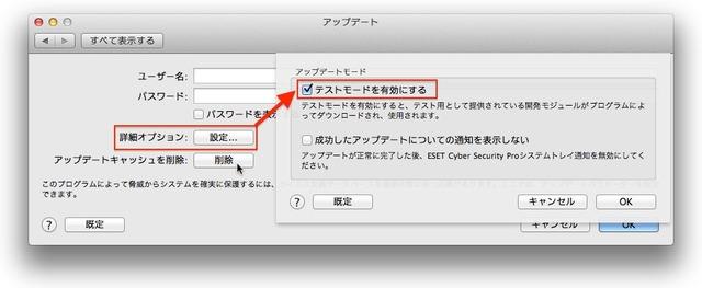 5_詳細オプションから[テストモードを有効にす]をチェック