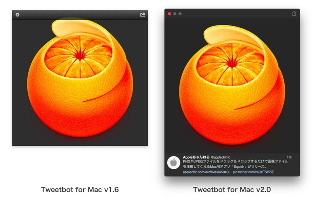 Tweetbot2-image-Preview