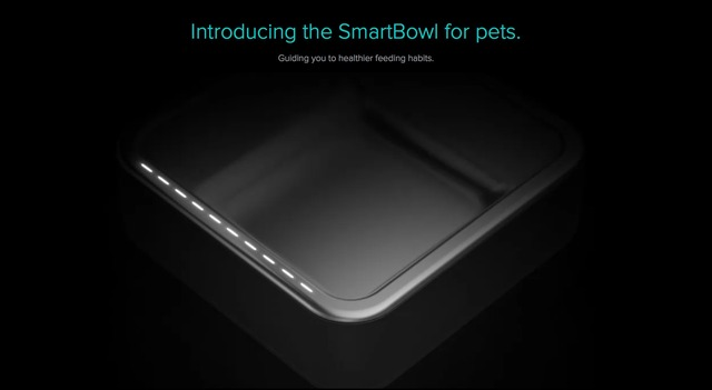 SmartBowl-for-Pets-Hero