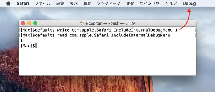 Safari-Debug-Menu-defaults