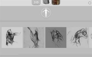 アーティストのための3D解剖学的構造_4