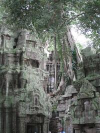 カンボジア 184
