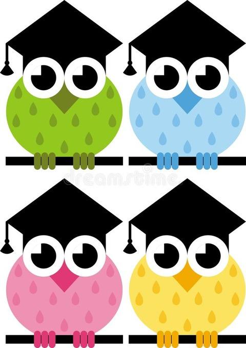 owl-symbol-wisdom-23113810