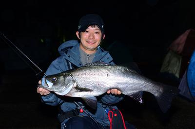 hira-suzuki02