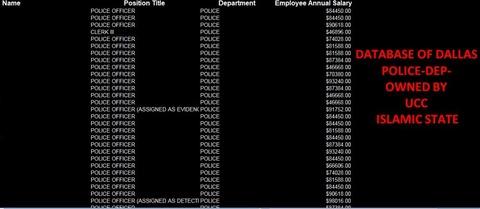 20160708_IS_UCC_ダラス警察の年収リスト(氏名欄を削除)
