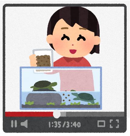 【悲報】ペット系Youtubeで月収15万なんやが最近心が傷んできた