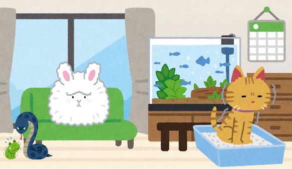 【急募】ペット禁止の家で飼えるペット