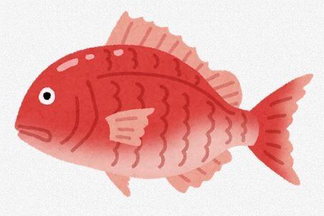 三重の養殖業者ら「助けて!真鯛が20万匹売れ残っているの!県が買って民に配るなり海に放つなりして!!」 知事に提案